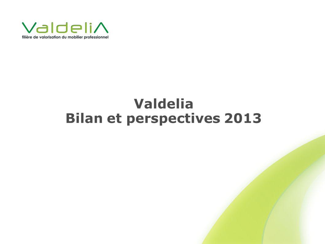 Valdelia Bilan et perspectives 2013