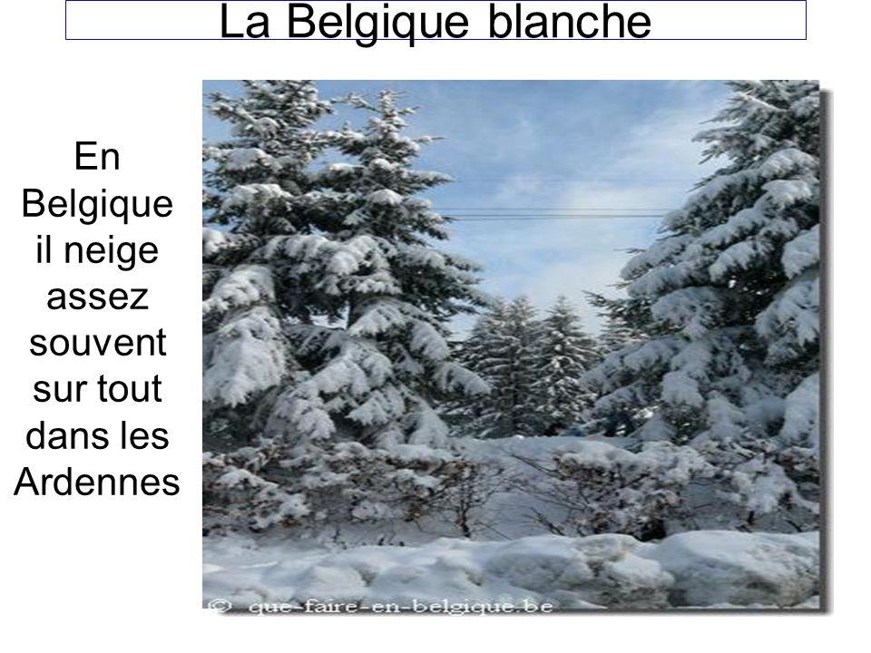 En Belgique il neige assez souvent sur tout dans les Ardennes