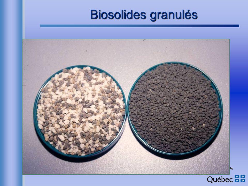 Biosolides granulés