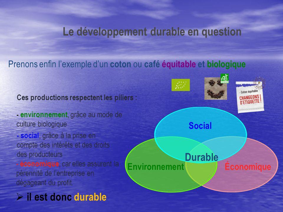 Le développement durable en question