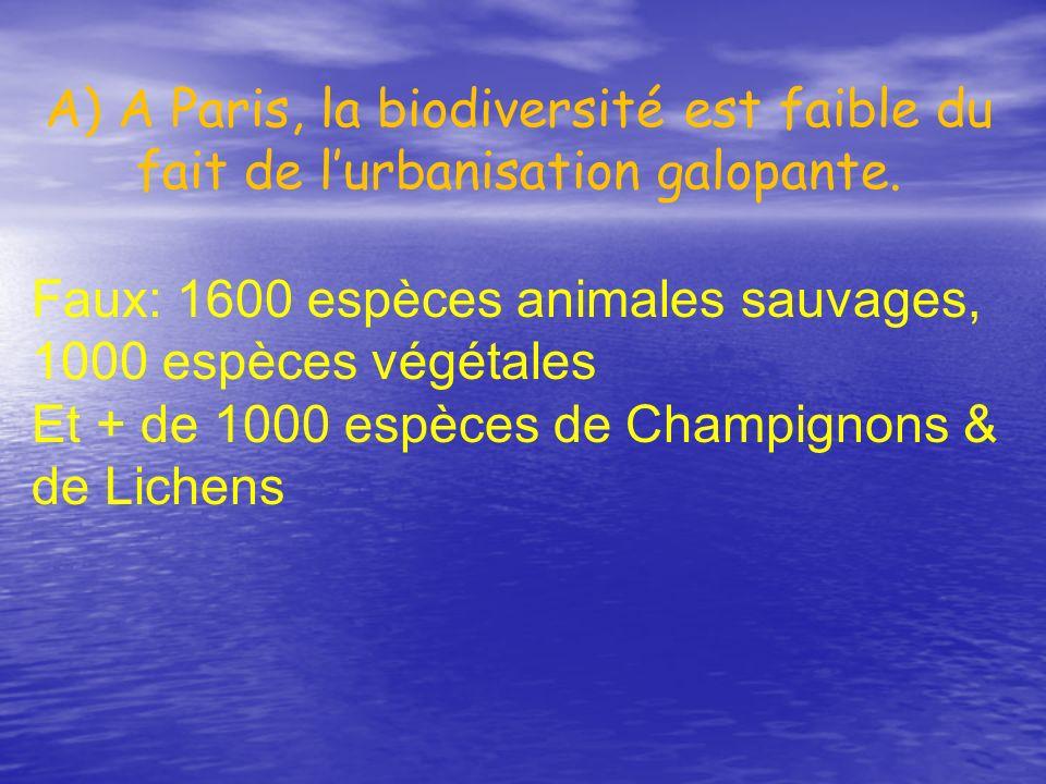 A) A Paris, la biodiversité est faible du fait de l'urbanisation galopante.
