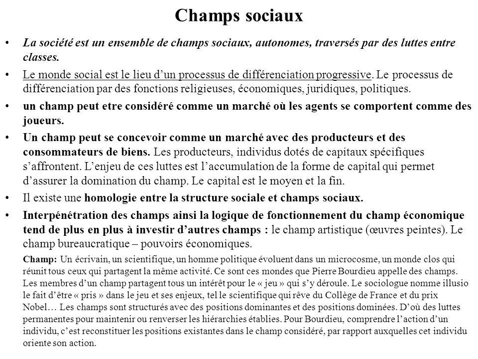 Champs sociaux La société est un ensemble de champs sociaux, autonomes, traversés par des luttes entre classes.