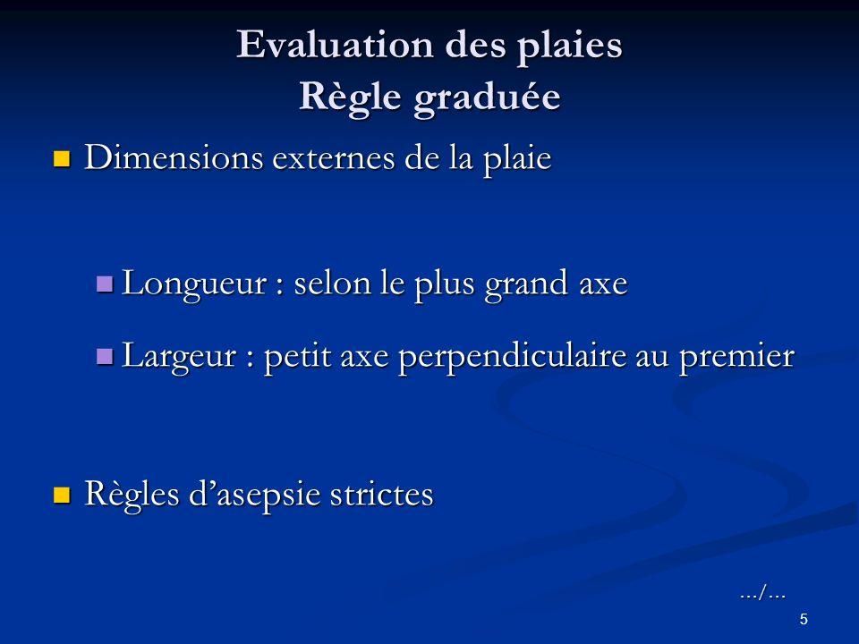 Evaluation des plaies Règle graduée