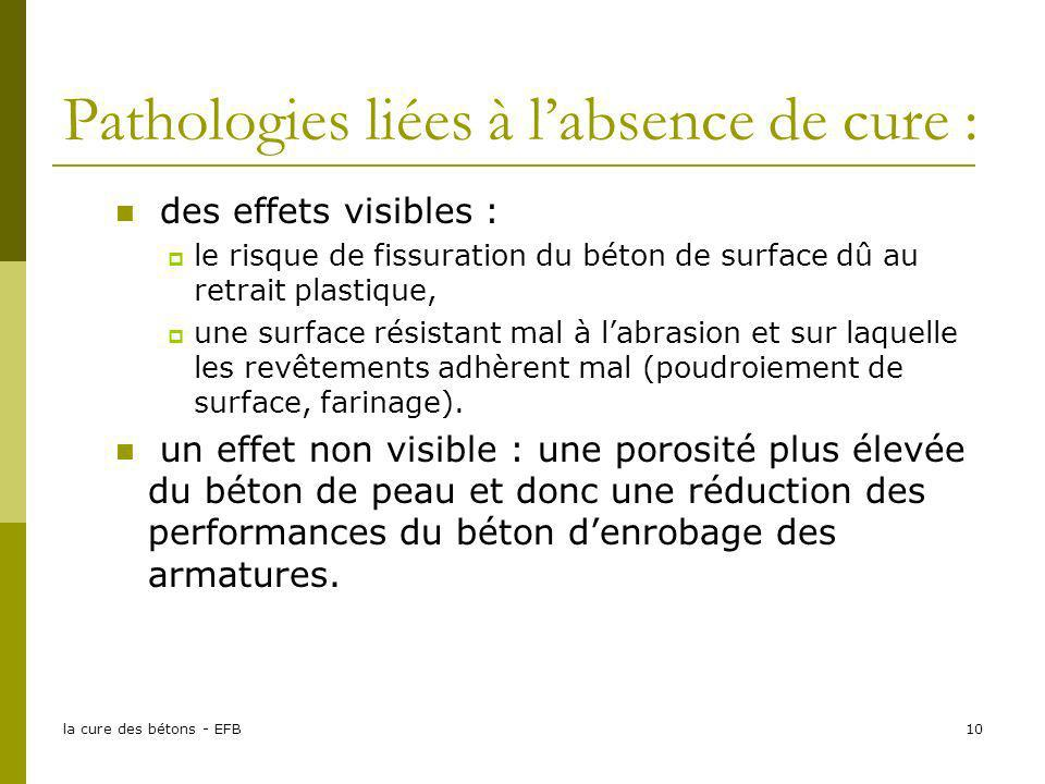Pathologies liées à l'absence de cure :