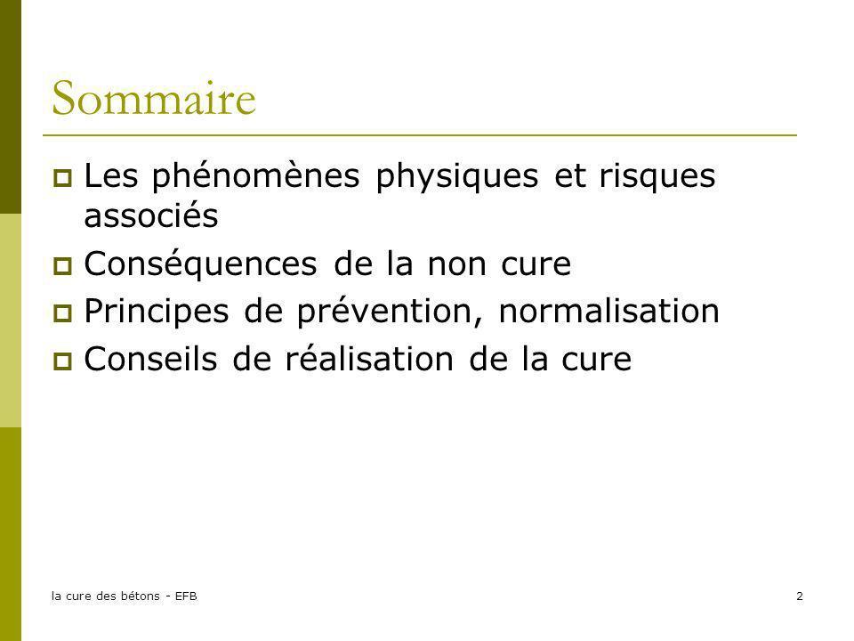 Sommaire Les phénomènes physiques et risques associés