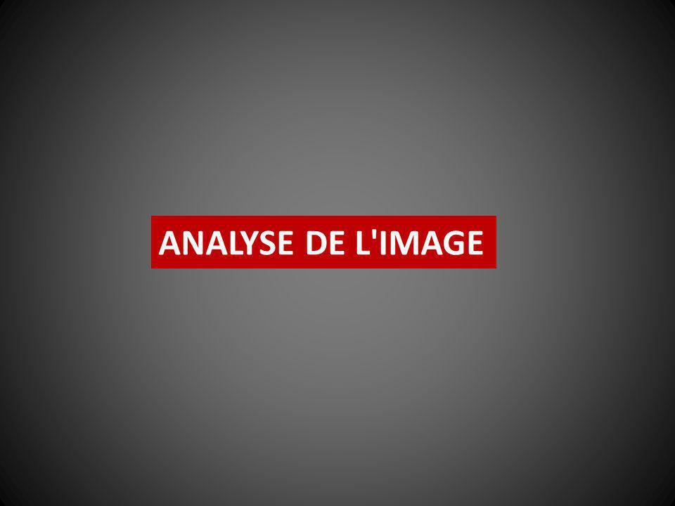 ANALYSE DE L IMAGE