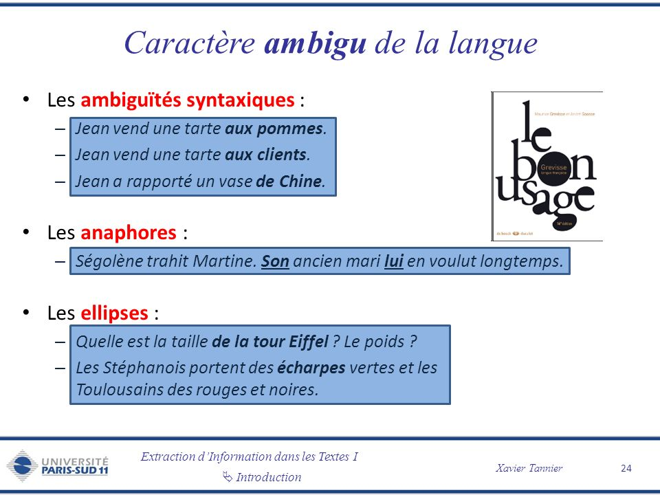 Caractère ambigu de la langue