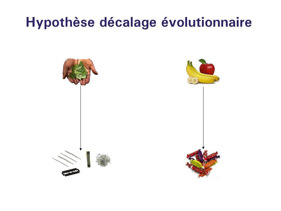 Hypothèse décalage évolutionnaire