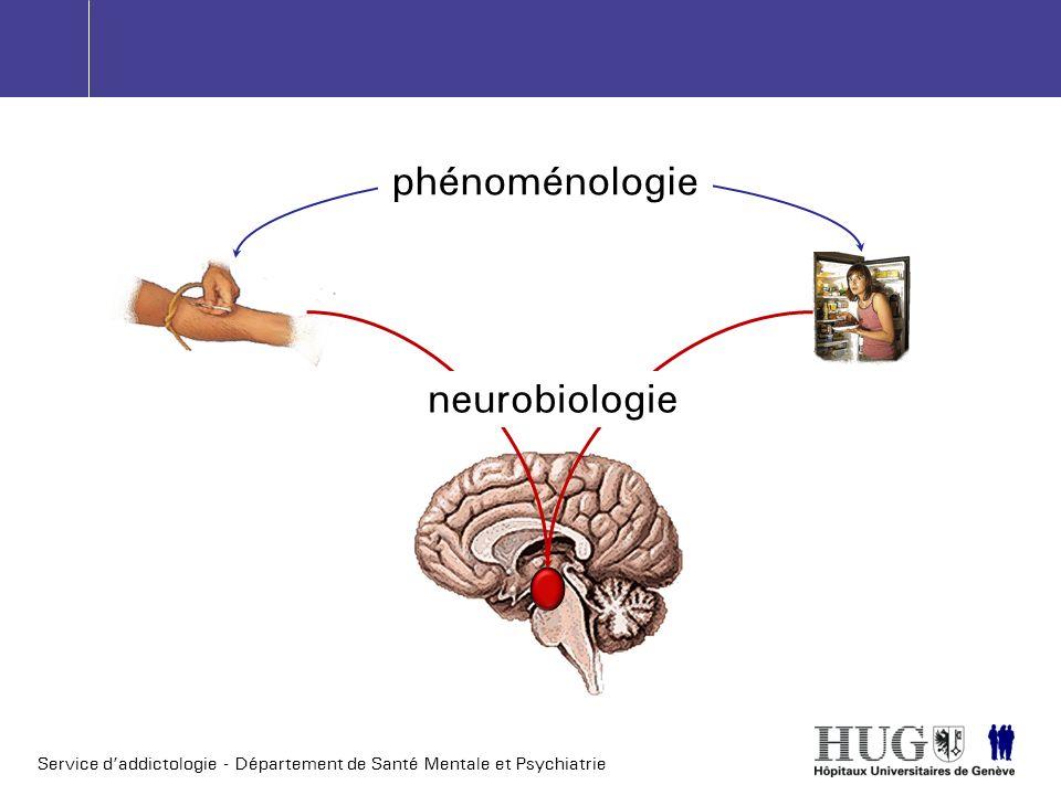 phénoménologie neurobiologie