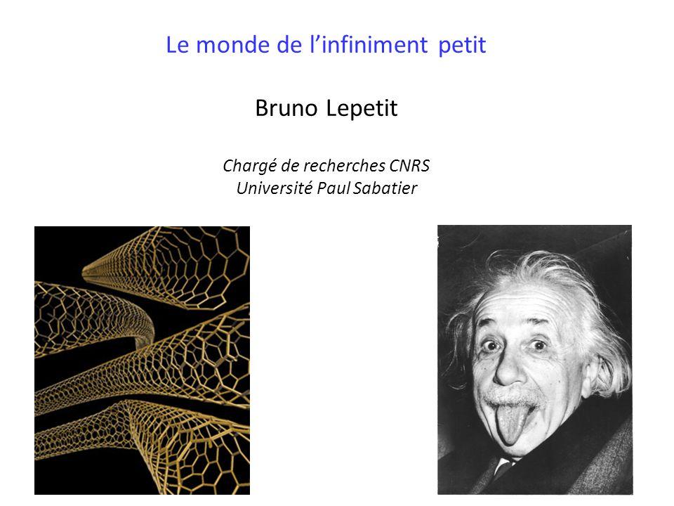Le monde de l'infiniment petit Bruno Lepetit