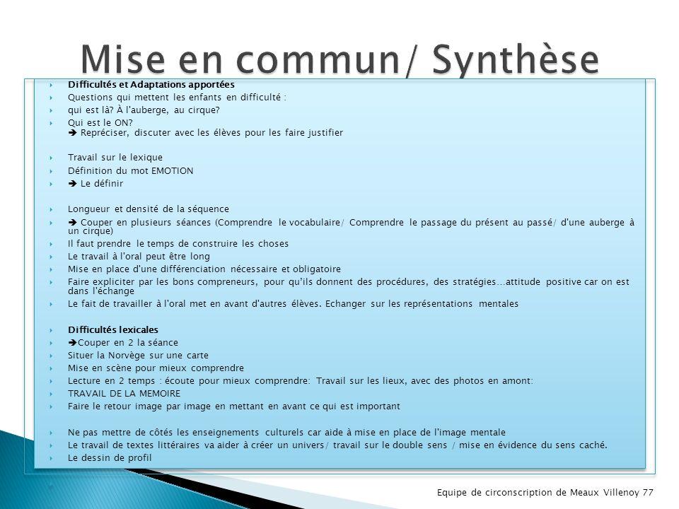 Mise en commun/ Synthèse