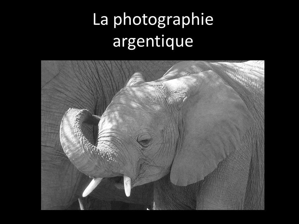 La photographie argentique