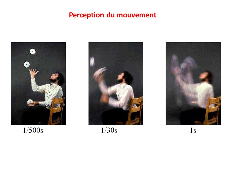 Perception du mouvement