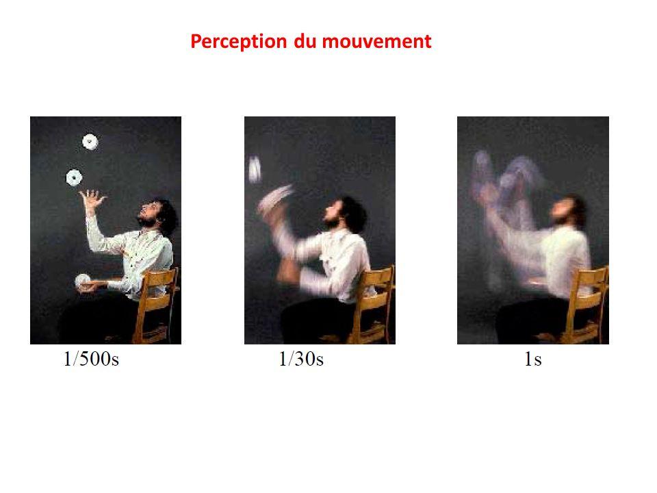 Perception du mouvement