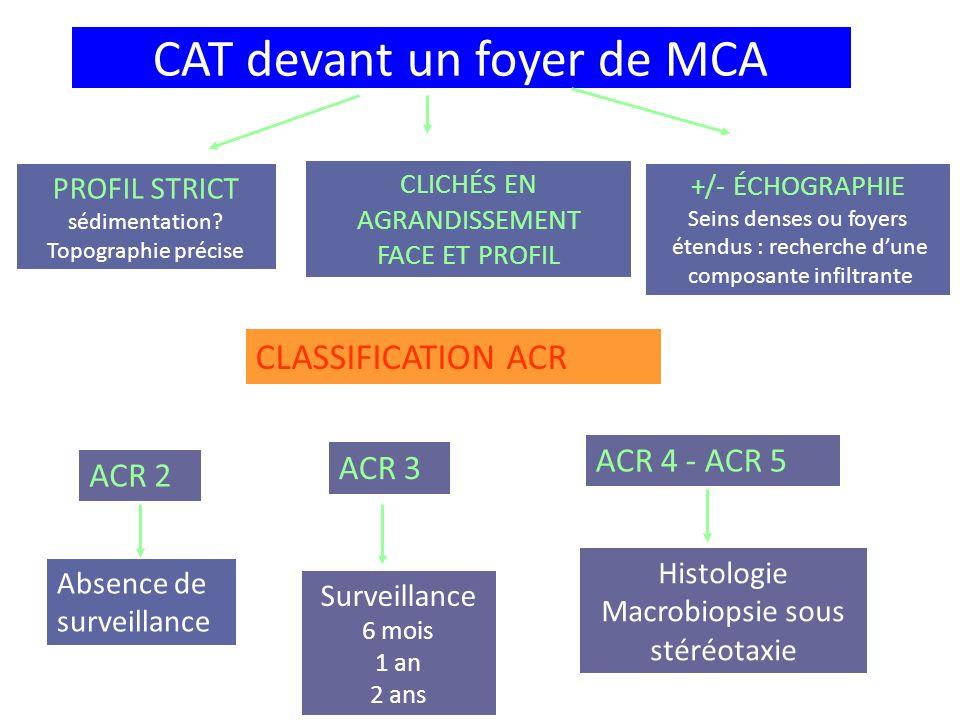 CAT devant un foyer de MCA