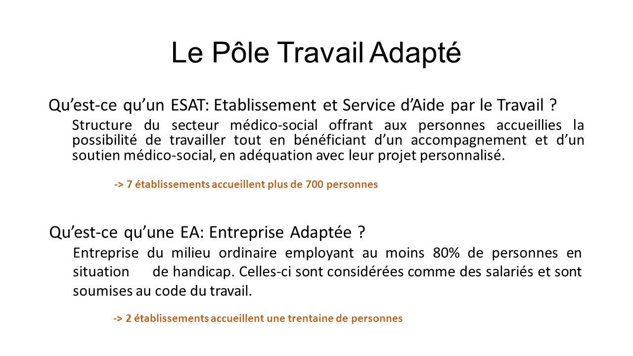 Le Pôle Travail Adapté Qu'est-ce qu'un ESAT: Etablissement et Service d'Aide par le Travail