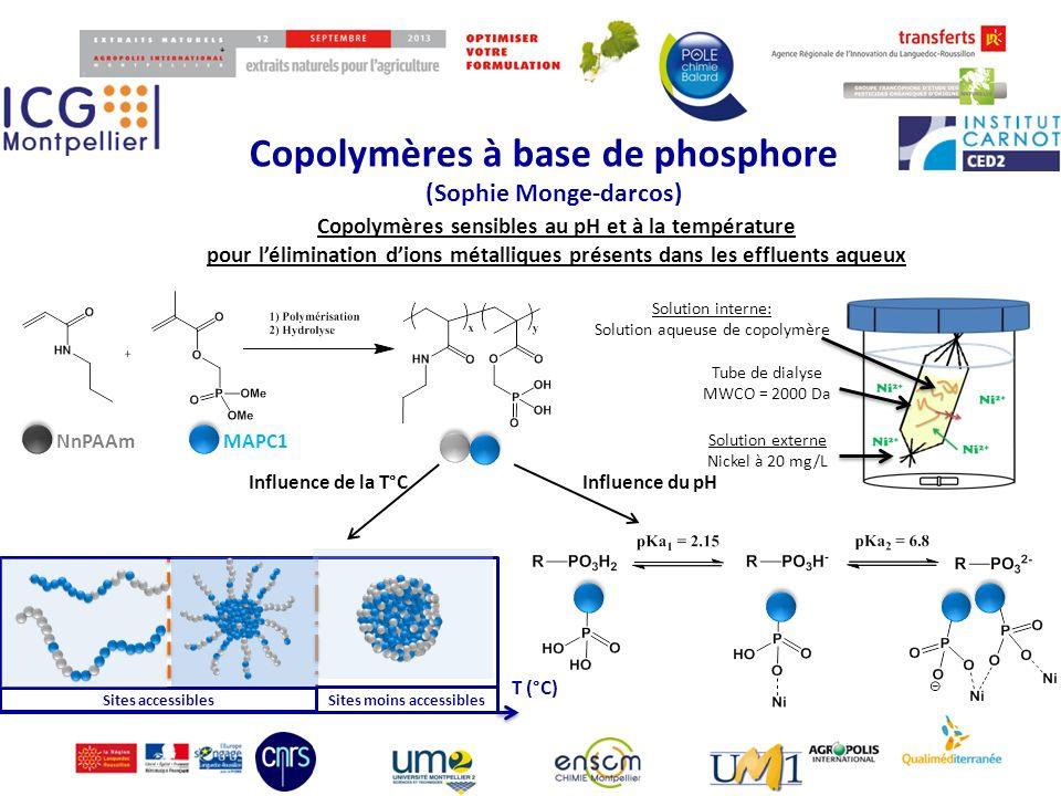 (Sophie Monge-darcos) Copolymères sensibles au pH et à la température