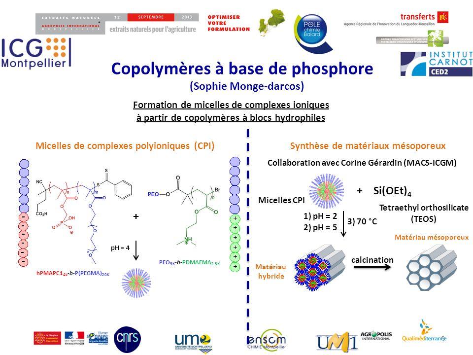 Copolymères à base de phosphore