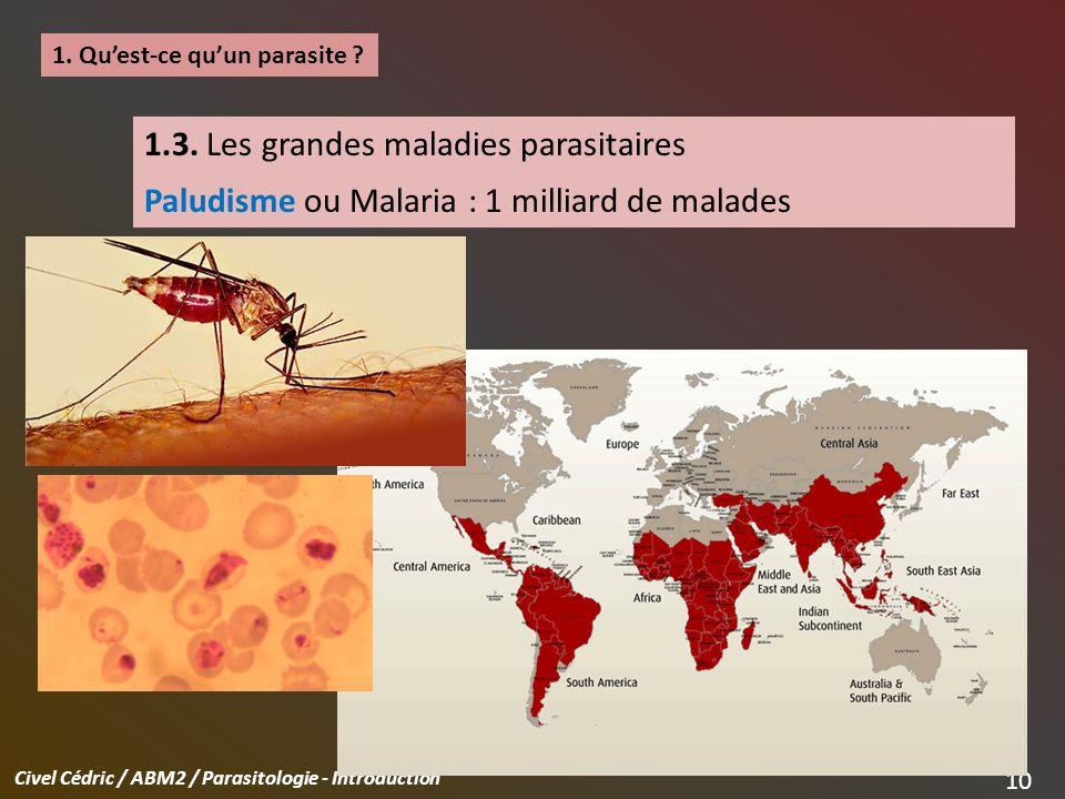 1.3. Les grandes maladies parasitaires