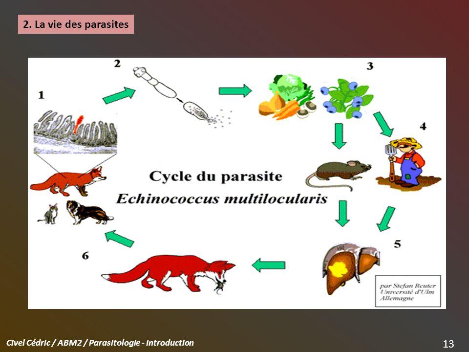 2. La vie des parasites