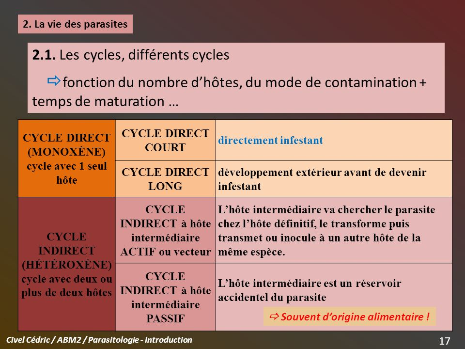 2.1. Les cycles, différents cycles