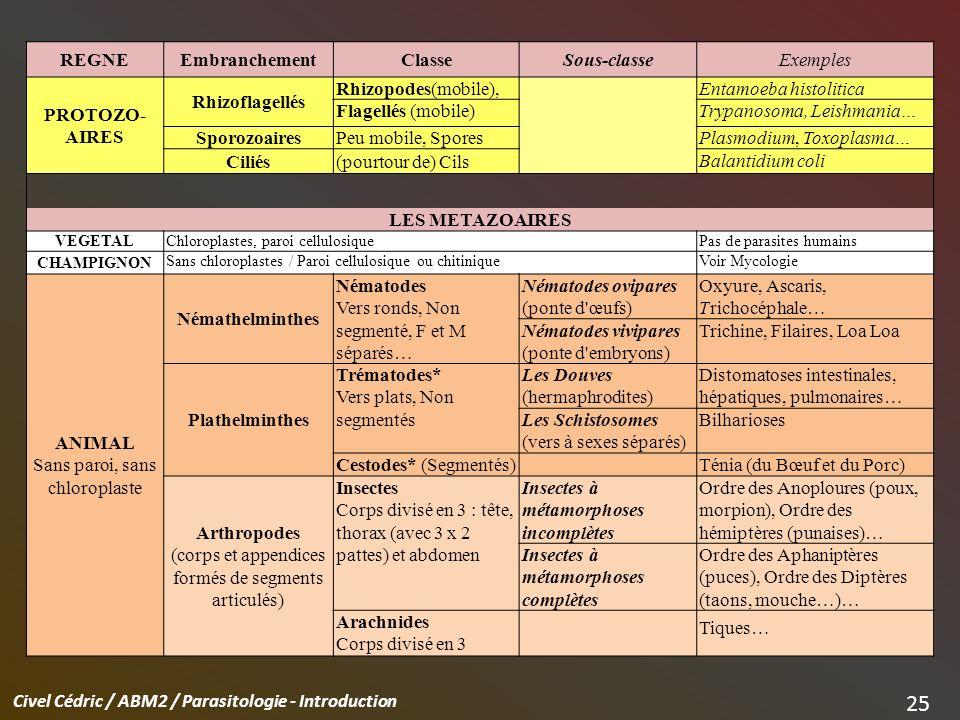 Entamoeba histolitica Flagellés (mobile) Trypanosoma, Leishmania…