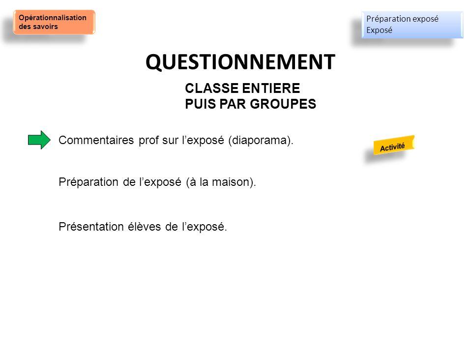 QUESTIONNEMENT CLASSE ENTIERE PUIS PAR GROUPES