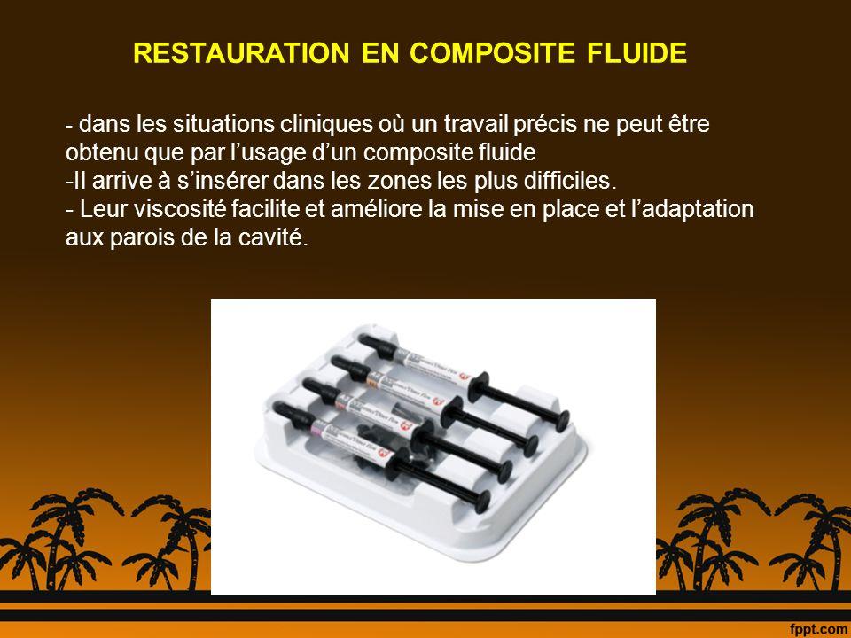 RESTAURATION EN COMPOSITE FLUIDE