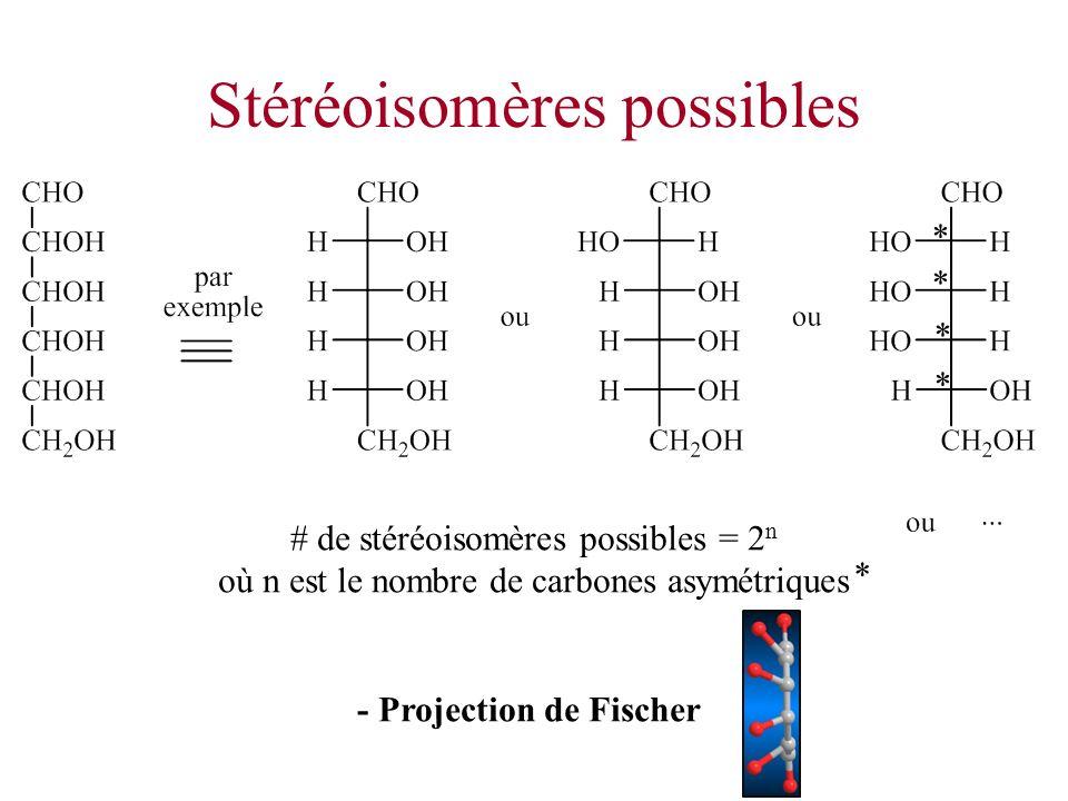 Stéréoisomères possibles