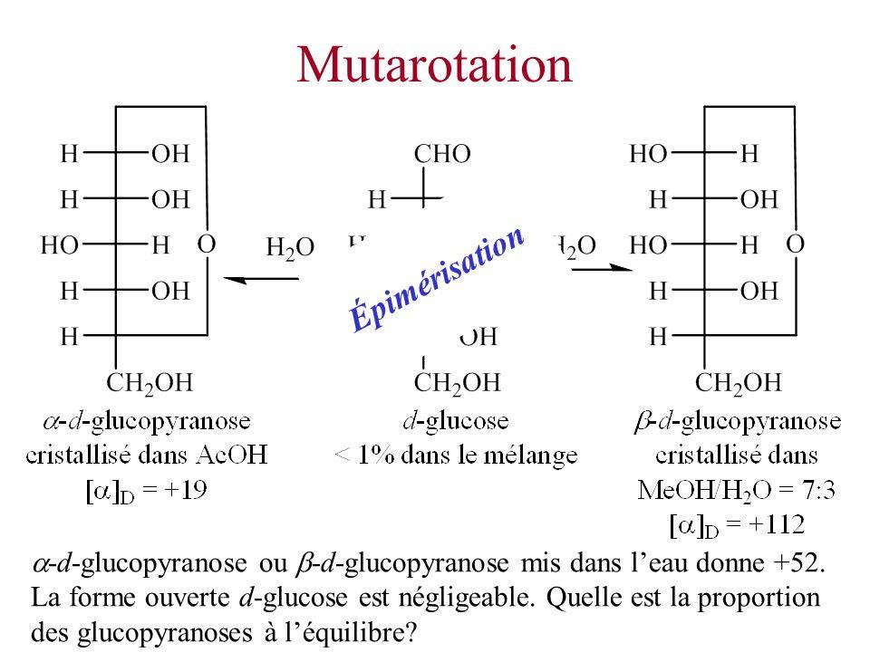 Mutarotation Épimérisation