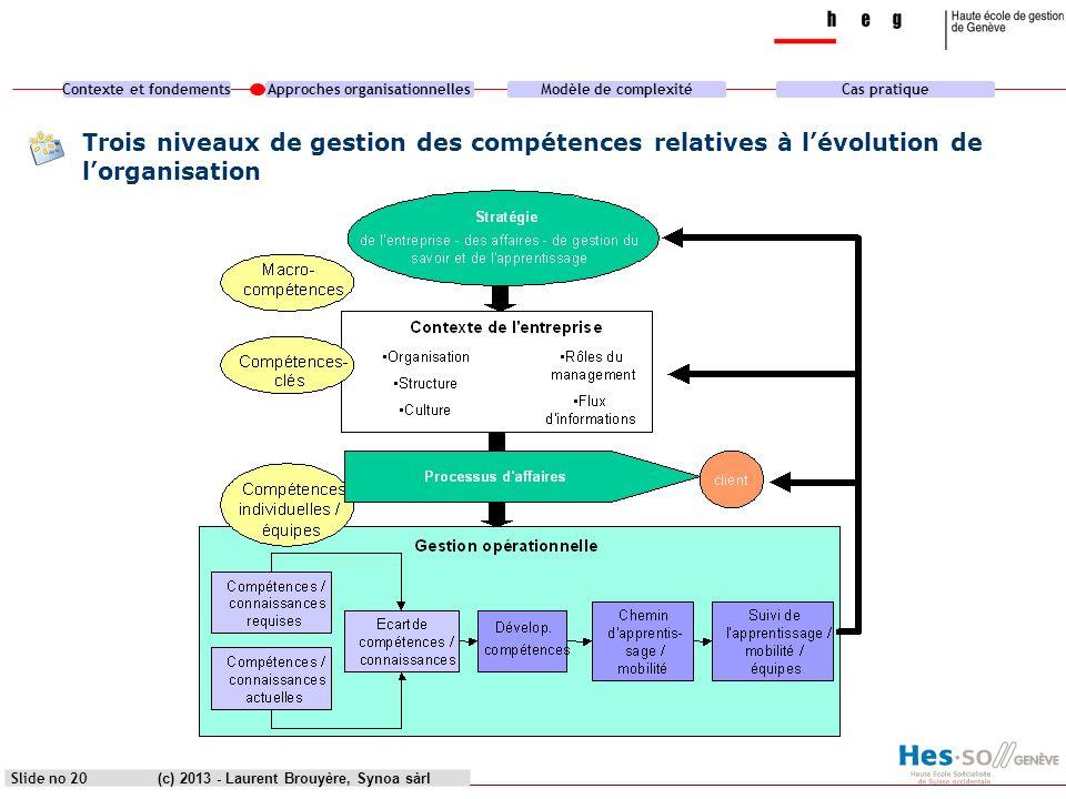 heg genève Trois niveaux de gestion des compétences relatives à l'évolution de l'organisation. (c) 2013 - Laurent Brouyère, Synoa sàrl.