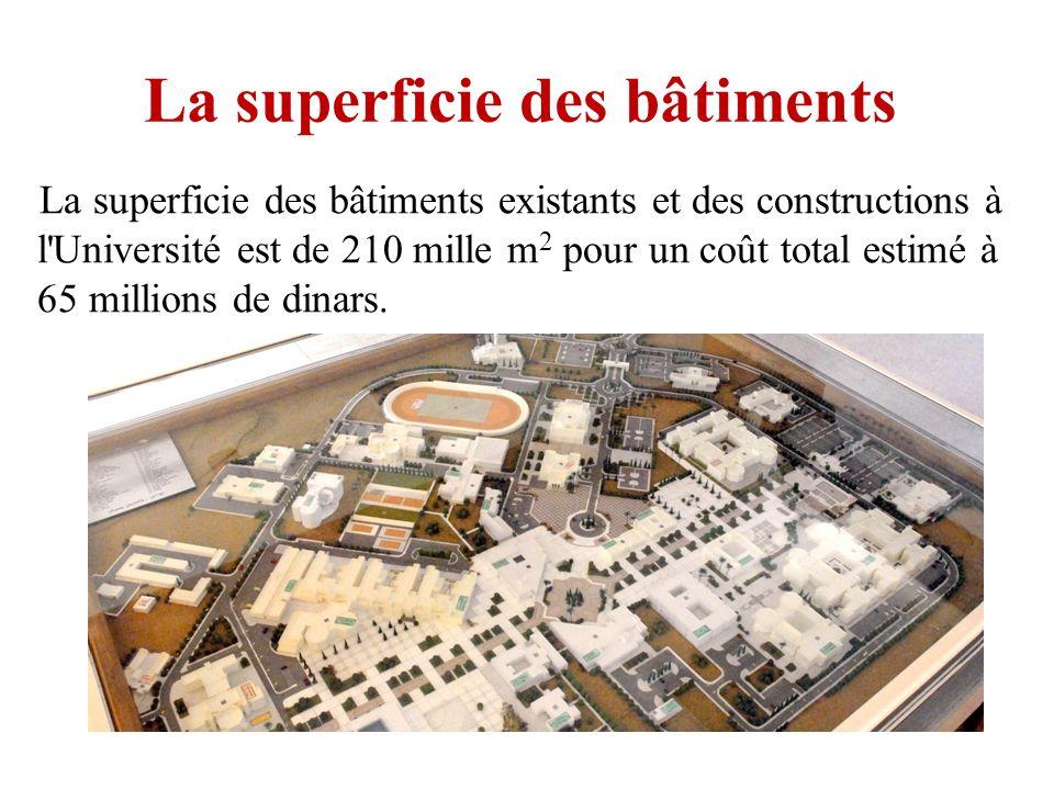 La superficie des bâtiments