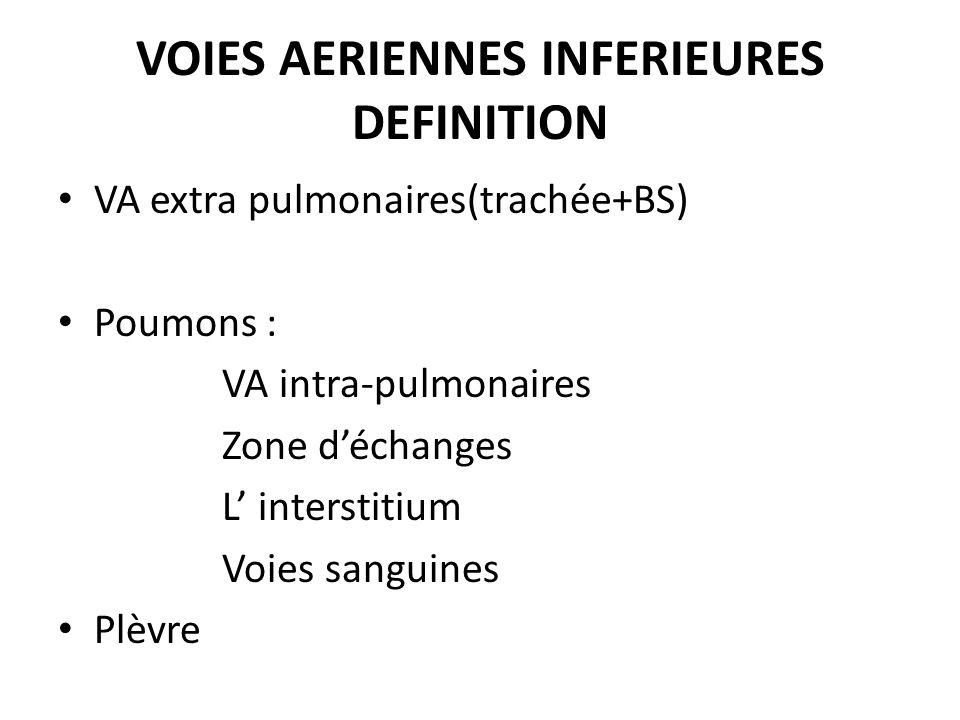VOIES AERIENNES INFERIEURES DEFINITION