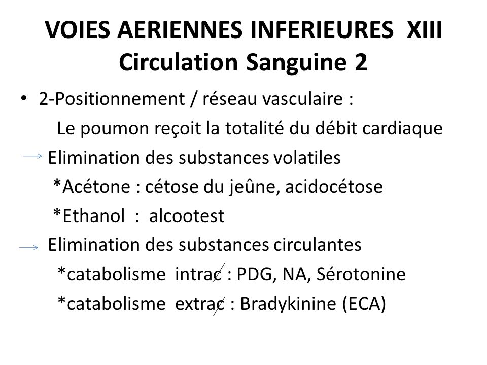 VOIES AERIENNES INFERIEURES XIII Circulation Sanguine 2