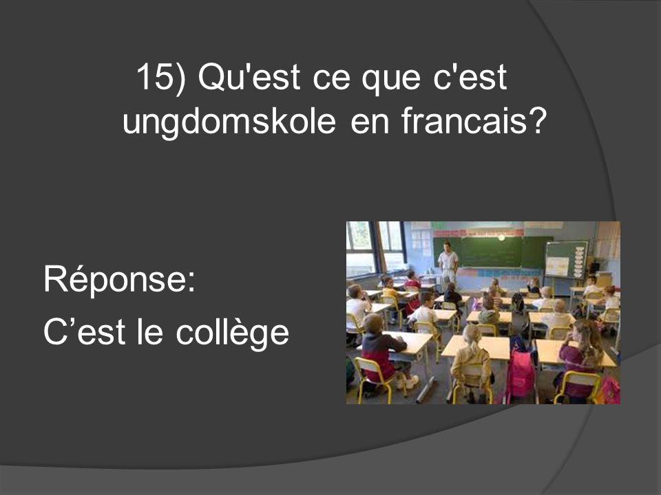 15) Qu est ce que c est ungdomskole en francais