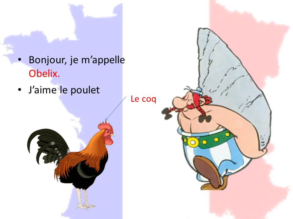 Bonjour, je m'appelle Obelix. J'aime le poulet