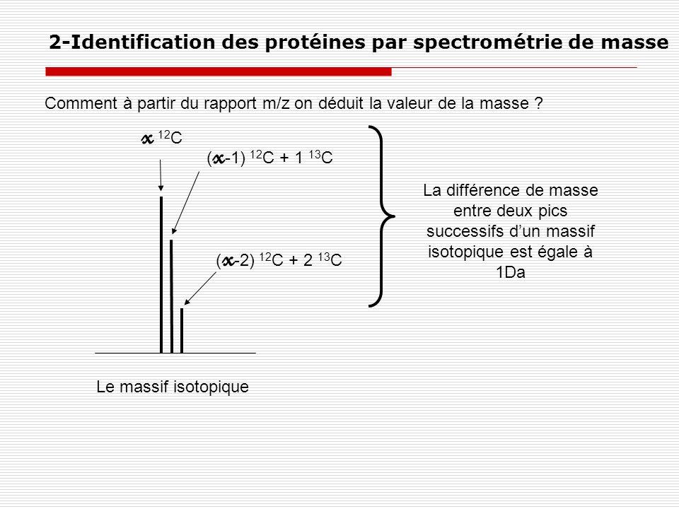 x 12C 2-Identification des protéines par spectrométrie de masse