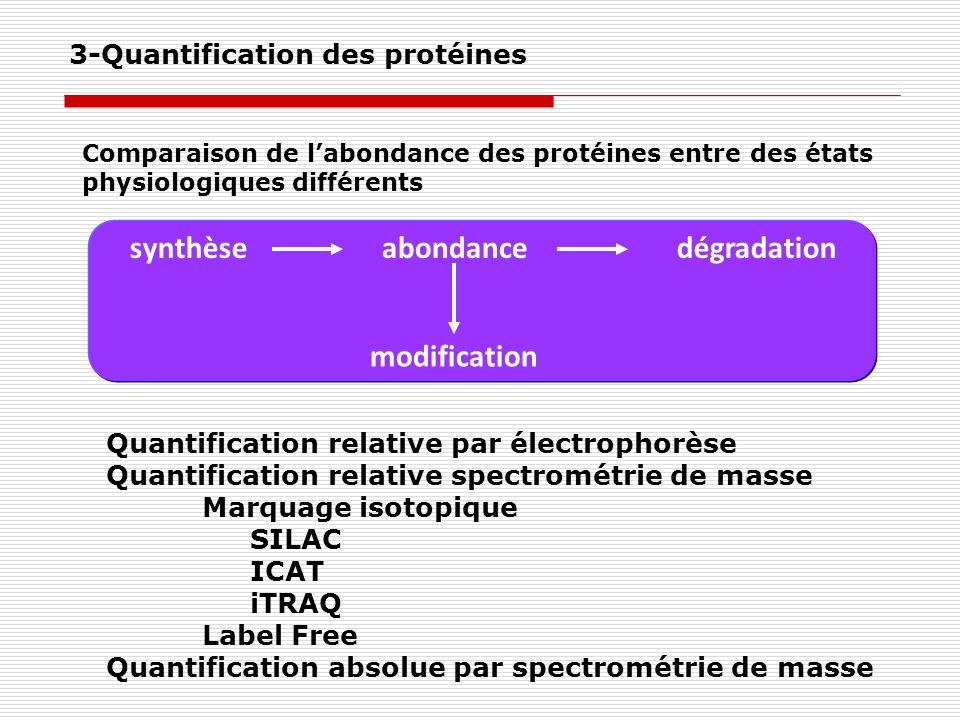 synthèse abondance dégradation modification