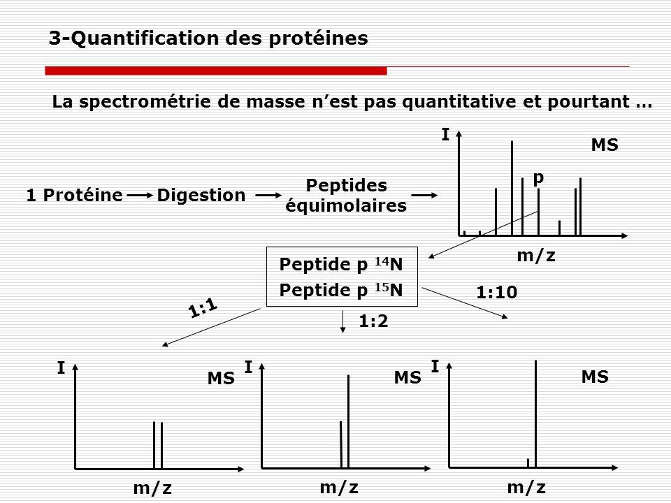 3-Quantification des protéines