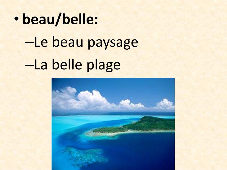beau/belle: Le beau paysage La belle plage
