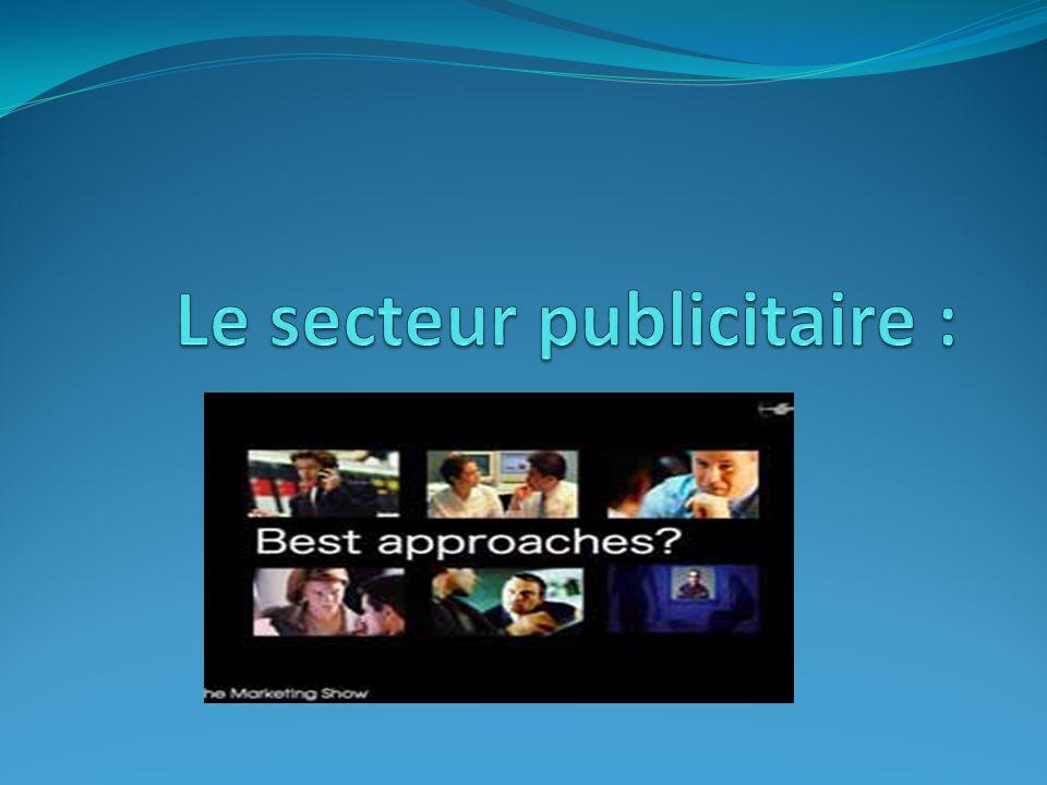 Le secteur publicitaire :