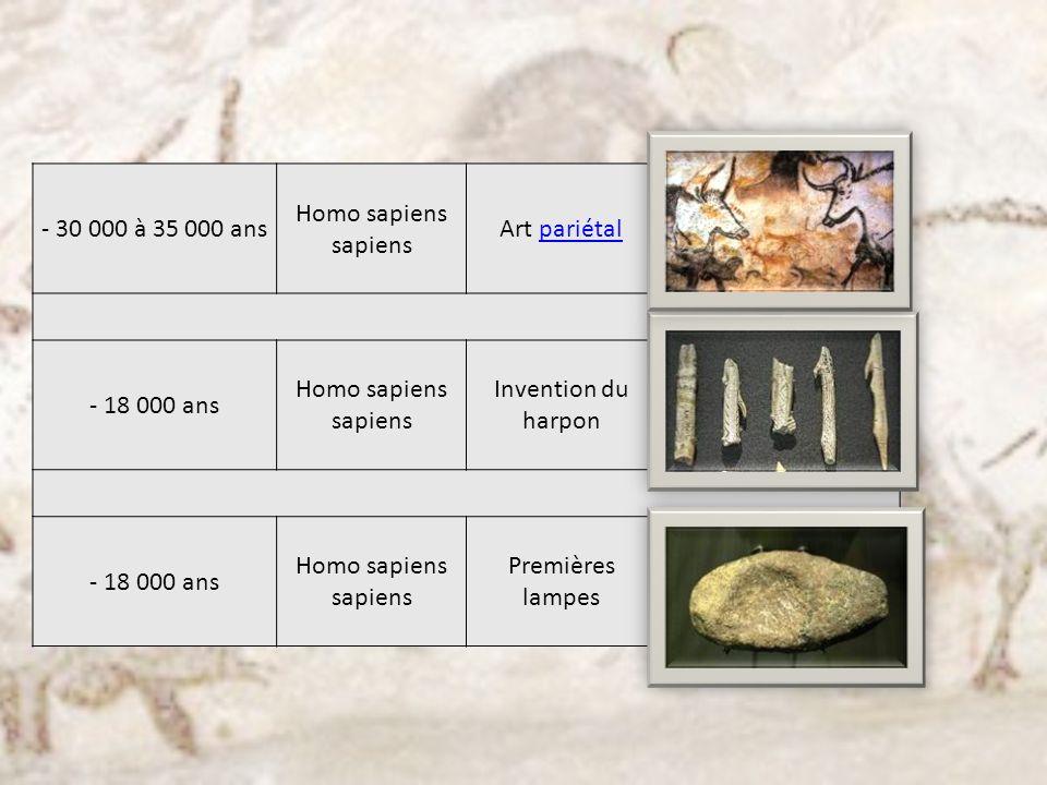 - 30 000 à 35 000 ans Homo sapiens sapiens. Art pariétal.