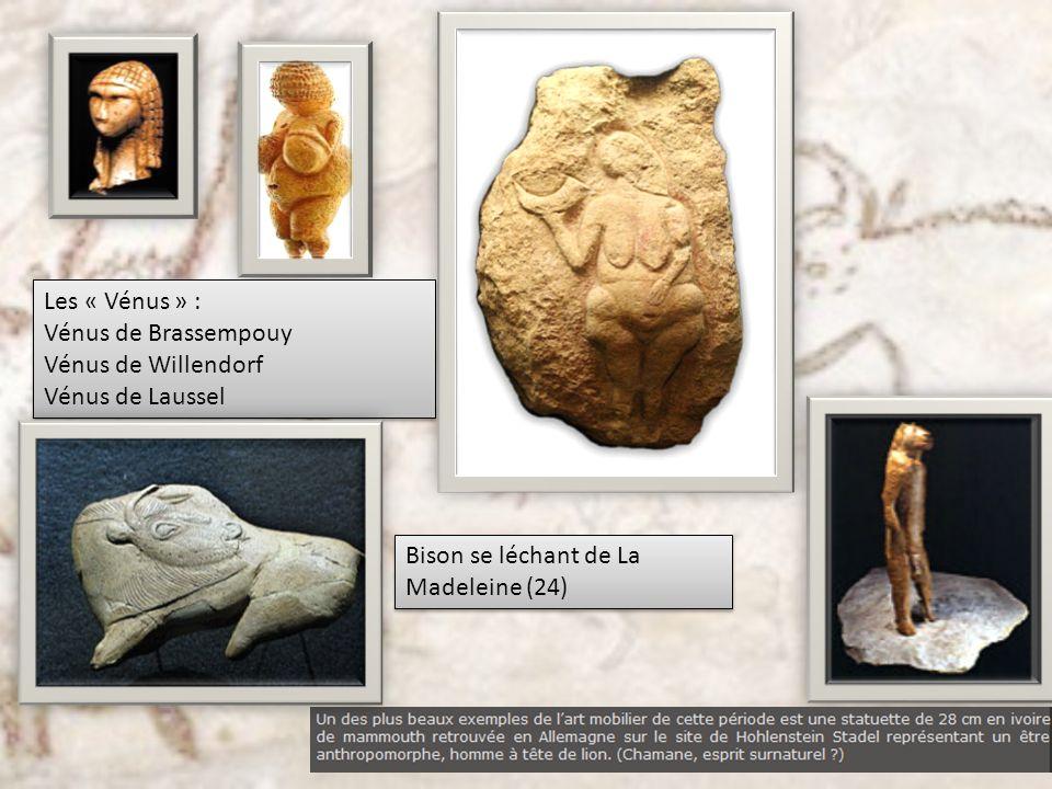 Les « Vénus » : Vénus de Brassempouy. Vénus de Willendorf.