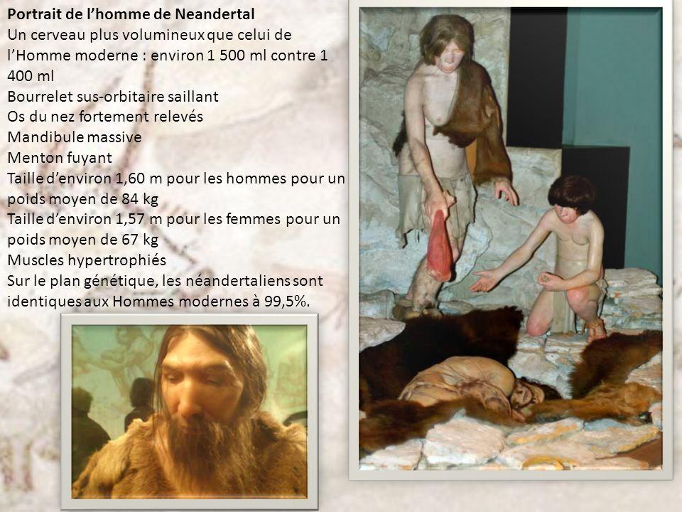 Portrait de l'homme de Neandertal