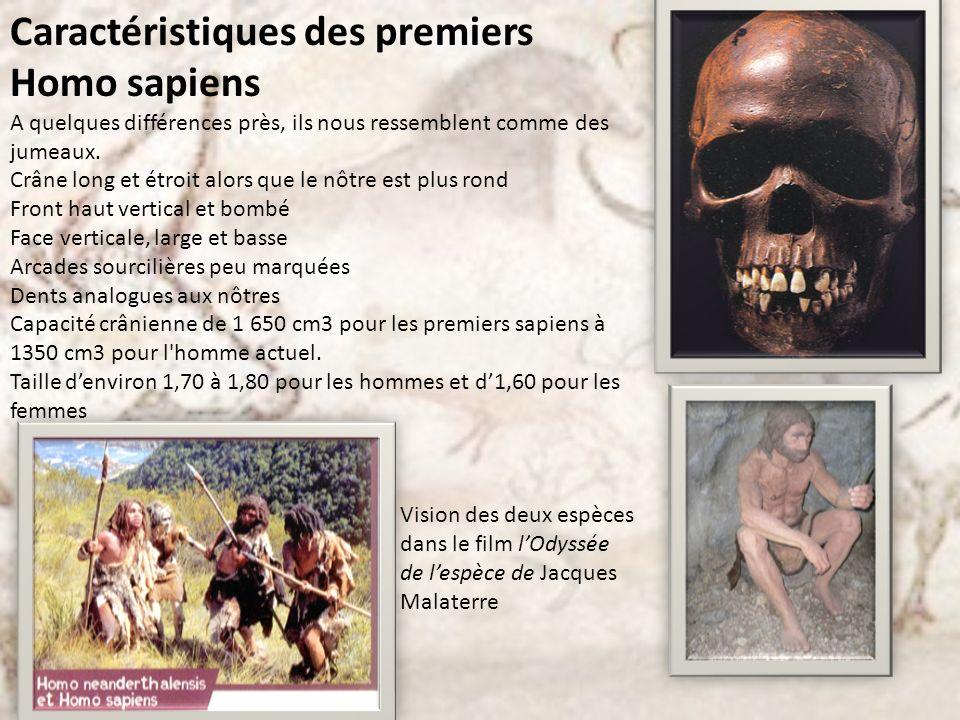 Caractéristiques des premiers Homo sapiens