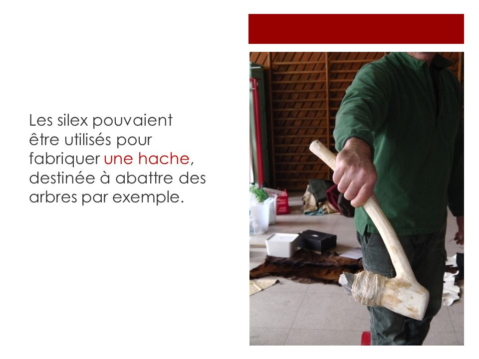 Les silex pouvaient être utilisés pour fabriquer une hache, destinée à abattre des arbres par exemple.
