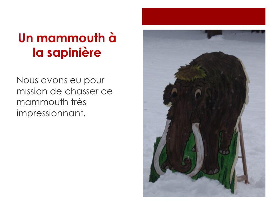 Un mammouth à la sapinière