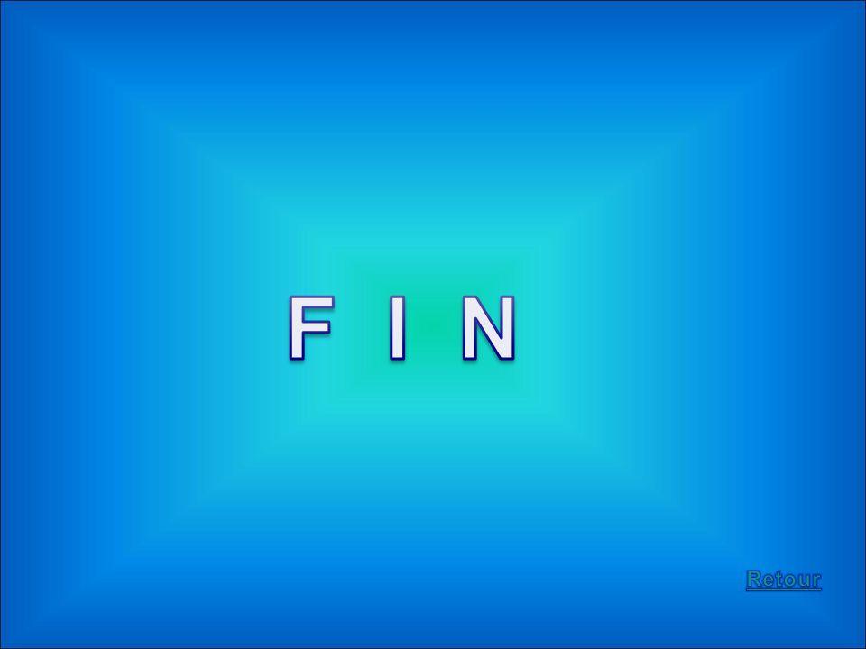 F I N Retour