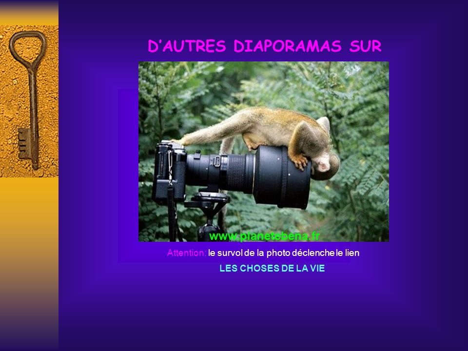 D'AUTRES DIAPORAMAS SUR