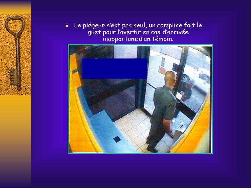 Le piégeur n'est pas seul, un complice fait le guet pour l'avertir en cas d'arrivée inopportune d'un témoin.